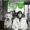 Dingo šuo - Kate Spicer, BALTO leidybos namai